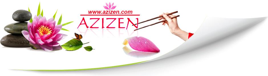azizen - Cuisinez asiatique avec des recettes  faciles et zens
